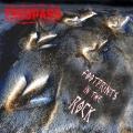 TRESPASS (UK) / Footprints In The Rock