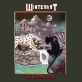 WINTERKAT (US) / The Struggle + 4