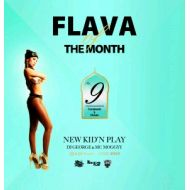 NEW KID'N PLAY【DJ GEORGE & MC MOGGYY】 / FLAVA OF THE MONTH Vol,9(CD)
