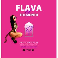 NEW KID'N PLAY【DJ GEORGE & MC MOGGYY】 / FLAVA OF THE MONTH Vol,13