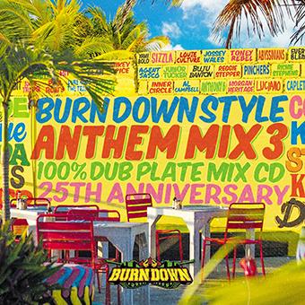 BURN DOWN / BURN DOWN STYLE ANTHEM vol.3
