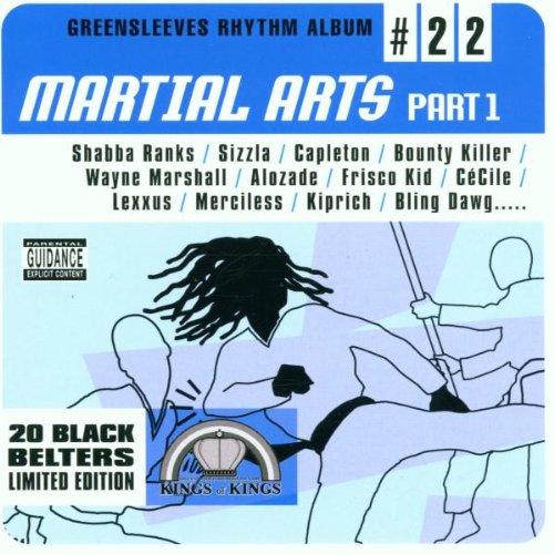 V.A. / RHYTHM ALBUM #22 -MARTIAL ARTS PART. 1-