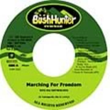 RYO THE SKYWALKER / MARCHING FOR FREEDOM
