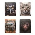 ネコ、サル、クモ、フクロウのパズル。
