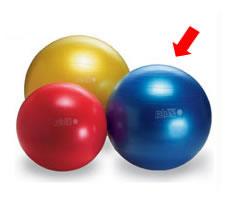 ギムニクプラスボール (65cm・青)