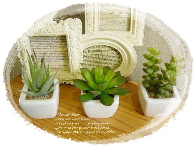 ミニ多肉植物 3点セット インテリア雑貨 インテリア置物 キッチン観葉植物 グリーン植物 高級造花【interia3】【ROMANTIC】【ロマンティック】