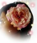 成人式髪飾りコサージュ シャンポール【ka2】【ROMANTIC】【ロマンティック】