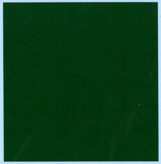 バルケッタ カラーデカール ブリティッシュグリーン 13cm × 13cm bd-003