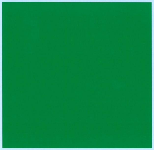 バルケッタ カラーデカール ブリリアントグリーン 13cm × 13cm bd-008