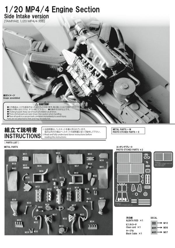 DP2009