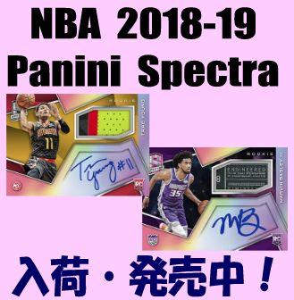 NBA 2018-19 Panini Spectra Basketball Box