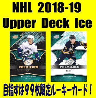 NHL 2018-19 Upper Deck Ice Hockey Box