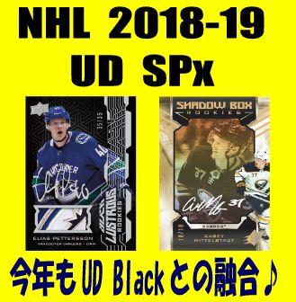 NHL 2018-19 UD SPx Hockey Box
