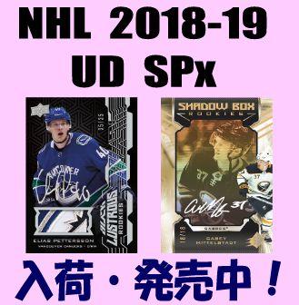 NHL 2018-19 Upper Deck SPx Hockey Box