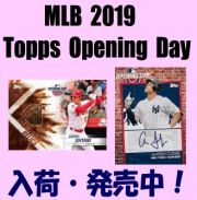 MLB 2019 Topps Opening Day Baseball Box