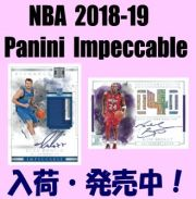 NBA 2018-19 Panini Impeccable Basketball Box