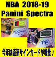 NBA 2018-19 Panini Spectra Basketball Box