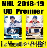 NHL 2018-19 Upper Deck Premier Hockey Box