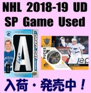 NHL 2018-19 Upper Deck SP Game Used Hockey Box