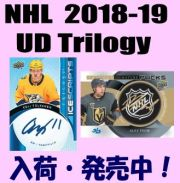 NHL 2018-19 Upper Deck Trilogy Hockey Box