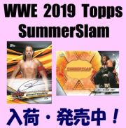 WWE 2019 Topps SummerSlam Wrestling Box