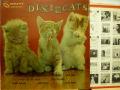 DIXIE CATS デキシー・キャッツ / Dixieland All Stars