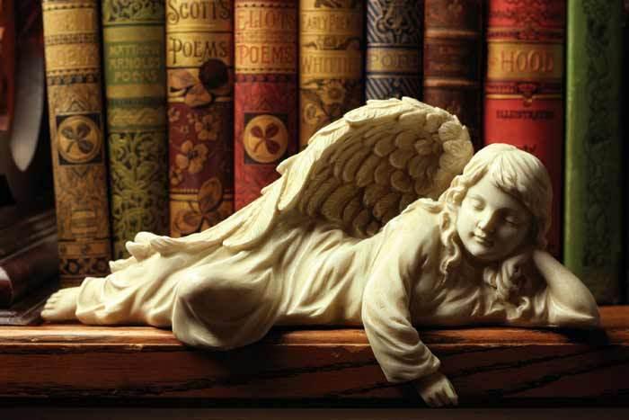 天使のブック シェルフ