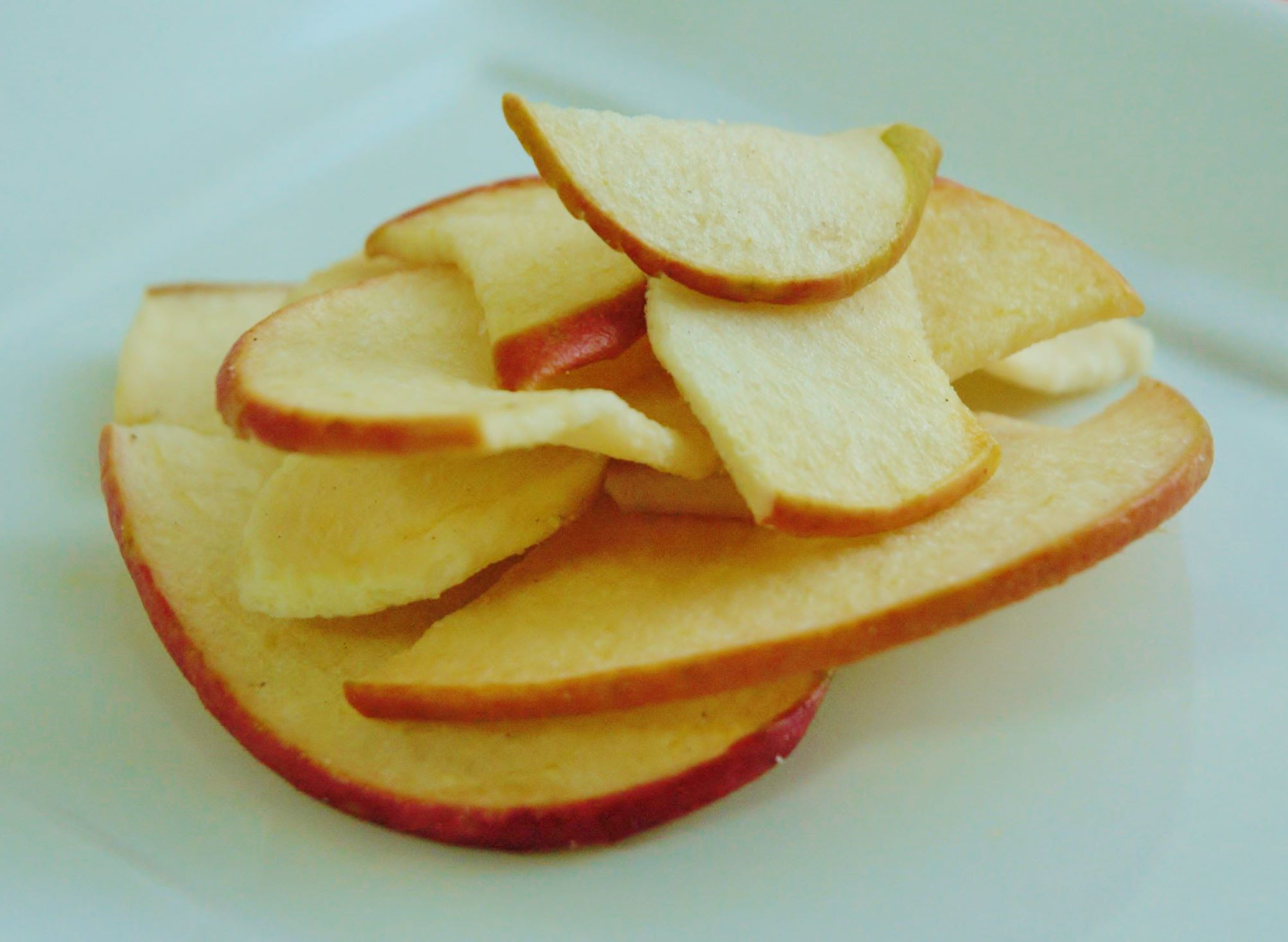 犬猫自然食おやつ こだわり うちの子専用♪果物チップ りんご 30g