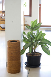 Rosily(ロージリー) バリ島 アタかご雑貨 茶筒型蓋付きL (DST199)