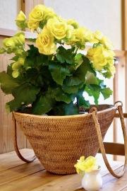 レトロ買物籠 Mサイズ (PNC146)  Rosily(ロージリー) バリ島 アタバスケット