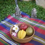編み編み果物カゴ(TRY298)  Rosily(ロージリー) バリ島 アタかご雑貨