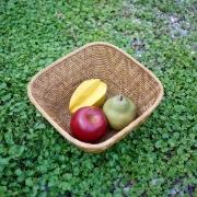 逆台形カゴLサイズ (TRY301)  Rosily(ロージリー) バリ島 アタかご雑貨
