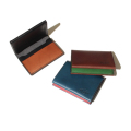 Bicolor card case