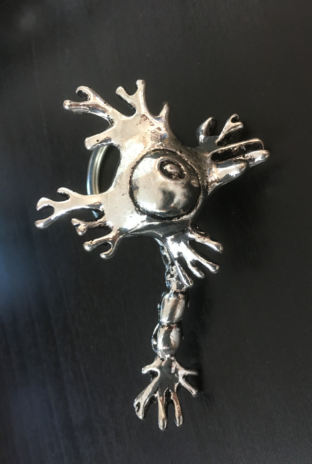 【アナトミーキーチェーン】ニューロン(Neuron)