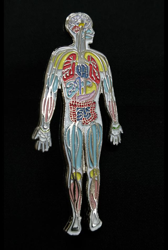 【アナトミーピンバッチ】全身解剖図(Anatomy Body Pin)