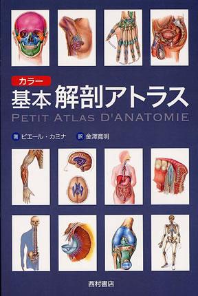 【書籍】カラー基本解剖アトラス