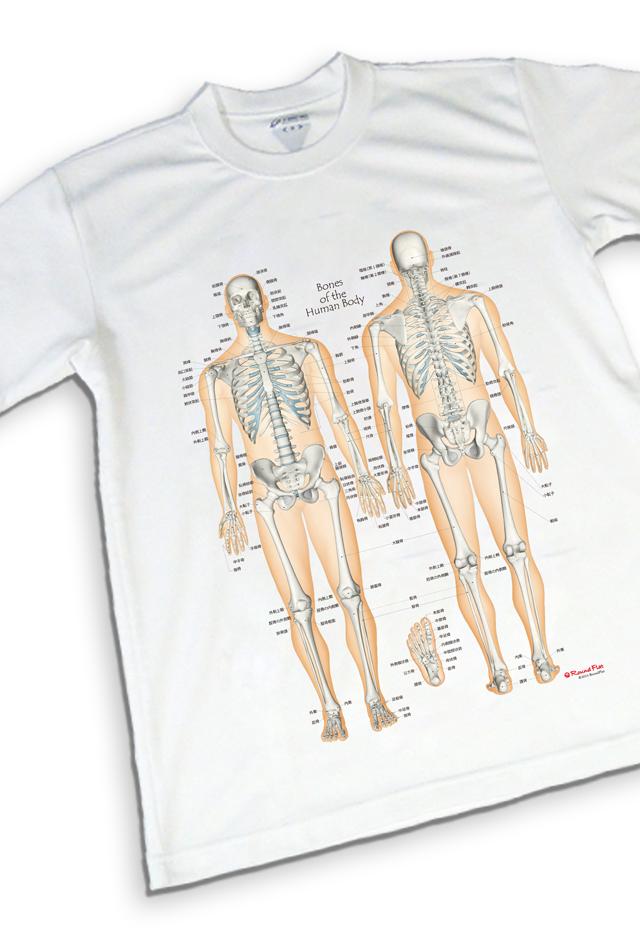 【アウトレット特価】骨チャートデザイン《Tシャツ》