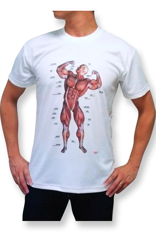 【解剖学Tシャツ】筋次郎デザイン《スポーツに最適》