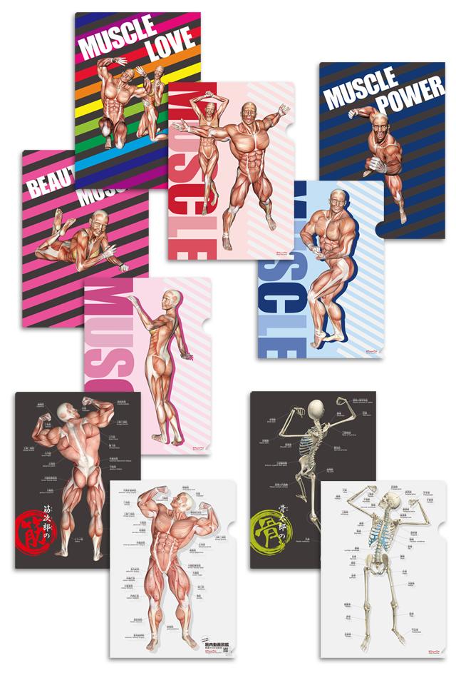 【新発売】筋次郎コレクション1DX クリアファイル5枚セット【日本語(ふりがな)・英語付&ポーズ】