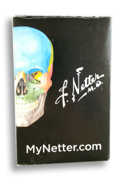 【グッズ】ネッターの解剖学トランプ《定番カードゲーム》