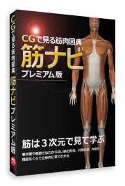 【Windows対応ソフトウェア】CGで見る筋肉図典 筋ナビ プレミアム版《全身177筋を収録》
