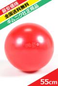 【ギムニク社正規品】ギムニクプラス(GYMNIC PLUS)55cm 【バウンドしても大丈夫】