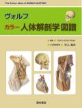 【書籍】ヴォルフ カラー人体解剖学図譜