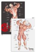 【新商品:5枚セット】筋次郎の筋 クリアファイル【日本語(ふりがな)・英語付】