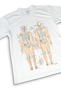 【解剖学Tシャツ】骨チャートデザイン《スポーツに最適》