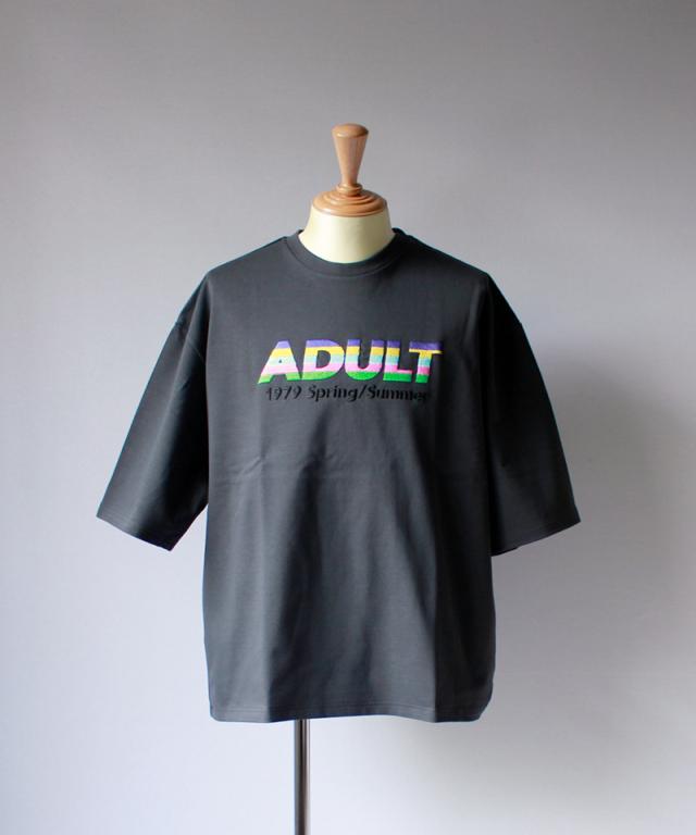 DAIRIKU ADULT T-SHIRT grey