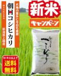朝日コシヒカリ新米