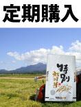 お米定期購入 特別栽培コシヒカリ