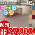 【送料無料】■AS カラーバリエーション豊富♪消臭抗菌エコカーペット 中京間長4.5畳(364x364) アスシャリオ2
