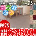 【送料無料】■AS カラーバリエーション豊富♪消臭抗菌エコカーペット 本間7.5畳(286x477) アスシャリオ2